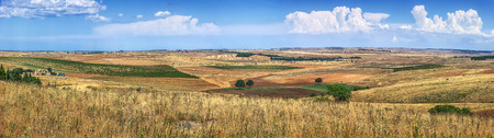 farmhouses: Beautiful panoramic view of typical landscape in southern italy with golden wheatfields, vineyards and old farmhouses on a sunny summer day with blue sky and clouds in the Apulia Basilicata region Stock Photo