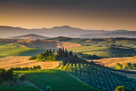 Scenic Tuscany landscape with rolling hills and valleys in golden morning light, Val dOrcia, Italy