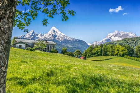 Idyllisch de zomerlandschap met traditioneel landbouwbedrijfhuis in de Alpen