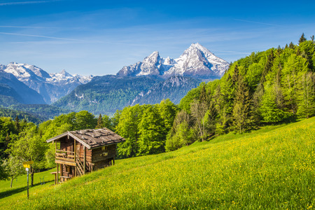 Beautiful view of idyllic mountain scenery in the Alps with fresh green mountain pastures with flowers and old traditional mountain lodge in springtime Stock Photo