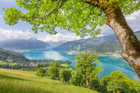 kitzsteinhorn: Panoramic view of beautiful scenery in the Alps with clear lake and green meadows full of blooming flowers on a sunny day with blue sky and clouds in springtime, Zell am See, Salzburger Land, Austria
