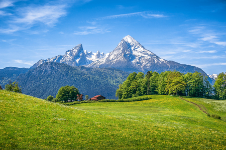 Idyllic landscape in the Alps with fresh green meadows, blooming flowers, typical farmhouses and snowcapped mountain tops in the background, Nationalpark Berchtesgadener Land, Bavaria, Germany Stock Photo