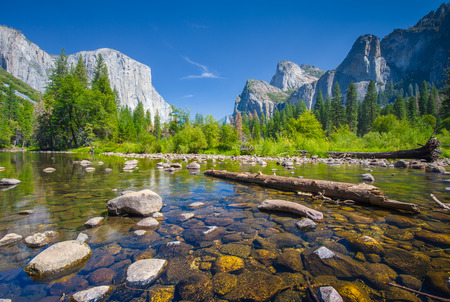 Classic view of scenic Yosemite Valley with famous El Capitan rock climbing summit and idyllic Merced river on a sunny day with blue sky and clouds in summer, Yosemite National Park, California, USA Фото со стока