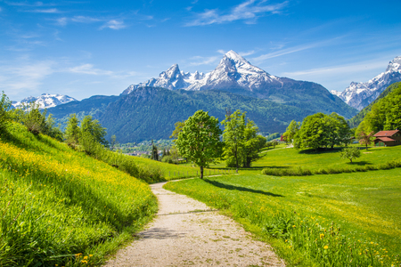 Idyllic landscape with hiking trail in the Alps with fresh green mountain pastures and snow-capped mountain tops in the background in summer 版權商用圖片