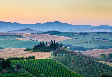 san quirico d'orcia: Classic view of scenic Tuscany landscape with famous farmhouse amidst idyllic rolling hills and valleys in beautiful golden morning light at sunrise in summer, Val dOrcia, Italy Stock Photo