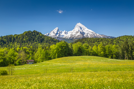 Beautiful view of idyllic alpine mountain scenery with blooming meadows and snowcapped mountain peaks on a beautiful sunny day with blue sky in springtime Stok Fotoğraf