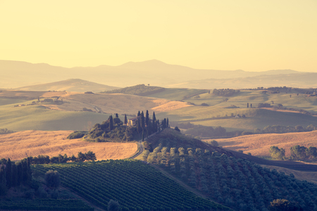 Classic view of scenic Tuscany landscape with famous farmhouse amidst idyllic rolling hills and valleys in beautiful golden morning light at sunrise in summer, Val dOrcia, Italy Banque d'images