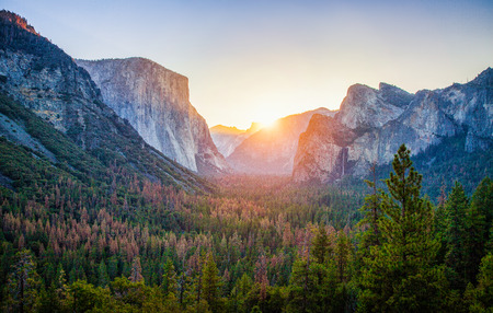 有名なエルキャピタン、ハーフドームの岩登りの頂上美しい黄金朝の夏、ヨセミテ国立公園、カリフォルニア州、米国で日の出光と風光明媚なヨセ