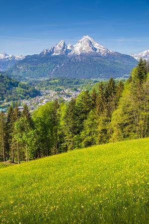 유명한 Watzmann 산 피크와 봄 날, Berchtesgaden, 독일에서에서 푸른 하늘이 아름 다운 화창한 날에 피 초원 목가적 인 산의 경치를 볼 스톡 콘텐츠
