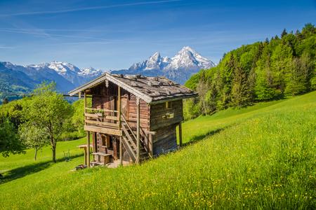 夏の青い空と雲晴れた日に伝統的なシャレーには、アルプスや花が咲くと新鮮な緑山の牧草地ののどかな山の風景の美しい景色
