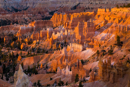 Classic view of famous Hoodoos sandstone formations at Bryce Canyon National Park in beautiful golden morning light at sunrise seen from famous Sunrise Point in summer, Utah, American Southwest, USA Фото со стока