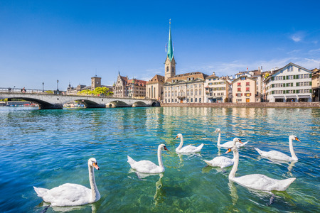 Beautiful view of the historic city center of Zurich with famous Fraumunster Church and swans on river Limmat on a sunny day with blue sky, Canton of Zurich, Switzerland 스톡 콘텐츠
