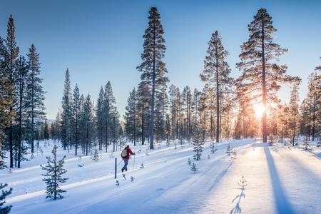 Panoramiczny widok człowieka na nartach biegowych na torze w pięknej scenerii zimowej krainy czarów w Skandynawii z malowniczym wieczornym światłem o zachodzie słońca w zimie, północna Europa