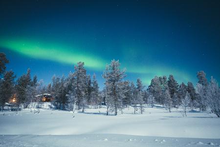 스칸디나비아, 유럽 북부의 아름다운 추운 밤에 나무와 눈이 아름다운 겨울 원더 랜드 풍경을 통해 놀라운 오로라 보 리 얼리 스 오로라의 전경 스톡 콘텐츠 - 95513355