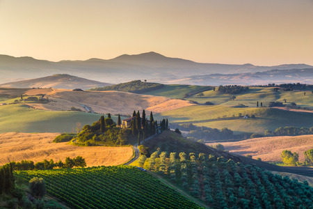 Classic view of scenic Tuscany landscape with famous farmhouse amidst idyllic rolling hills and valleys in beautiful golden morning light at sunrise in summer, Val dOrcia, Italy 스톡 콘텐츠