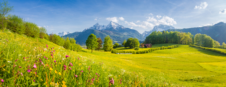 Beautiful view of idyllic alpine mountain scenery with blooming meadows and snowcapped mountain peaks on a beautiful sunny day with blue sky in springtime Stock Photo