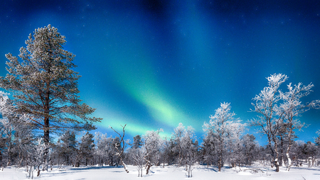 Panoramic view of amazing Aurora Borealis northern lights over beautiful winter wonderland scenery