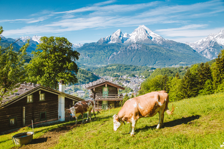 Beautiful panoramic view of idyllic alpine scenery with traditional mountain