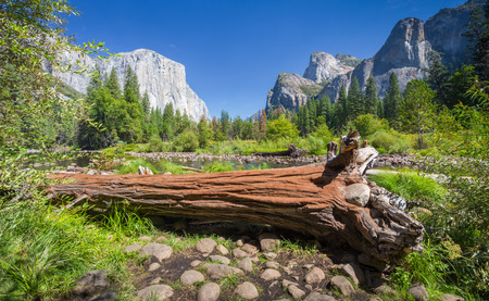 Classic view of scenic Yosemite Valley with famous El Capitan rock climbing summit