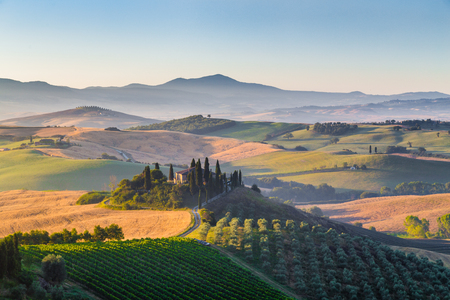 Classic view of scenic Tuscany landscape with famous farmhouse amidst idyllic rolling hills and valleys in beautiful golden morning light at sunrise in summer, Val d'Orcia, Italy 版權商用圖片