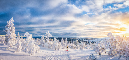 Panoramic view of young man cross-country skiing on a track in beautiful winter wonderland scenery in Scandinavia with scenic evening light at sunset in winter, northern Europe 스톡 콘텐츠 - 119003445