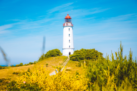 Classic view of famous Lighthouse Dornbusch on the beautiful island Hiddensee with blooming flowers in summer, Baltic Sea, Mecklenburg-Vorpommern, Germany Stock Photo - 119086469