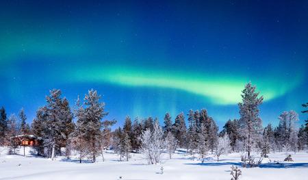 Panoramablick von erstaunlichen Nordlichtern Aurora Borealis über schöner Wintermärchenlandlandschaft mit Bäumen und Schnee in einer szenischen kalten Nacht in Skandinavien, Nordeuropa Standard-Bild