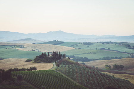 Classic view of scenic Tuscany landscape with famous farmhouse amidst idyllic rolling hills and valleys in beautiful golden morning light at sunrise in summer, Val d'Orcia, Italy Stockfoto - 121796045