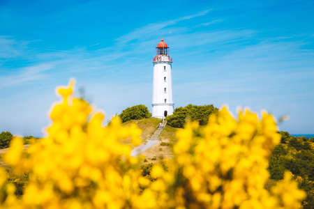 Classic view of famous Lighthouse Dornbusch on the beautiful island Hiddensee with blooming flowers in summer, Baltic Sea, Mecklenburg-Vorpommern, Germany 版權商用圖片