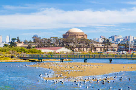 Beautiful view of famous Palace of Fine Arts with birds on a sand bank on a sunny day with blue sky and clouds in summer, San Francisco, California, USA 新聞圖片