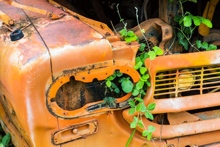 Abandon for years and old trucks rusts.Interior of abandoned old car