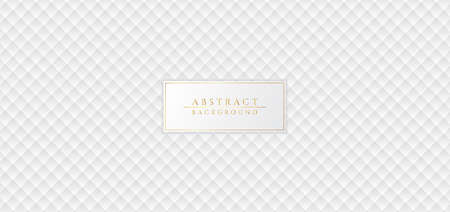White abstract pattern luxury clean concept modern background. vector illustration.