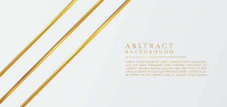 Modern white abstract background luxury design line gold style with space for content. vector illustration.