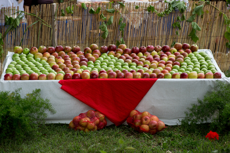 Table filled with green, red and yellow apples