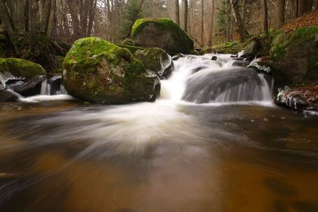 Forest stream with motion blur photo