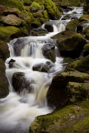 Forest stream, slow shutter creating motion effect Stock Photo - 6906310