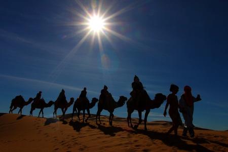 desierto del sahara: Caravana de camellos en el desierto del S�hara, Marruecos Foto de archivo