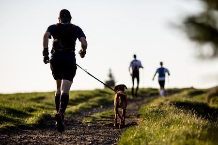 perro corriendo: Hombre con un perro en una carrera por la mañana Foto de archivo