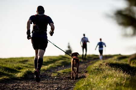 hiking trail: Man with a dog on a morning run Stock Photo