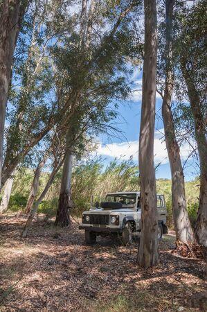 Rural Andalucia. Spain. 06102016. 4x4 terrain vehicle in forest. 版權商用圖片