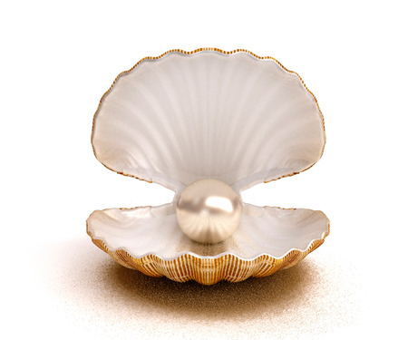 Sea shell with pearl Banque d'images