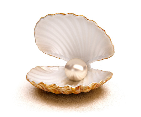 Sea shell with pearl photo