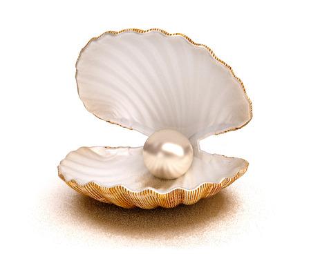 Sea shell with pearl Foto de archivo