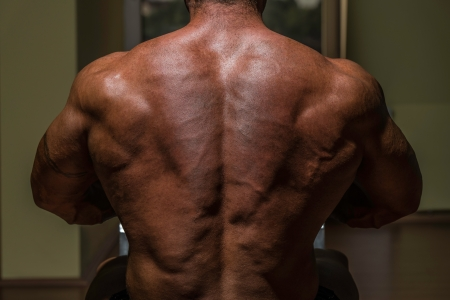 male bodybuilder flexing his back photo