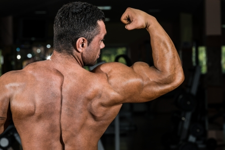 male bodybuilder showing his biceps photo