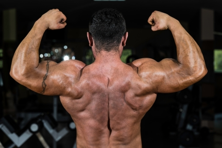 muscular bodybuilder showing his back double biceps photo
