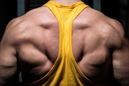 männliche Bodybuilder seine zurück