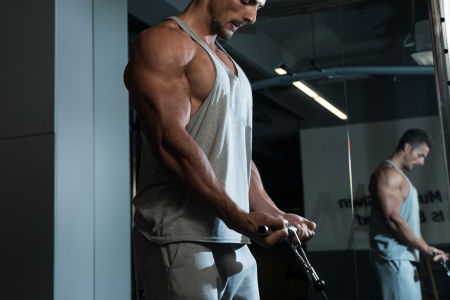 Biceps Workout photo
