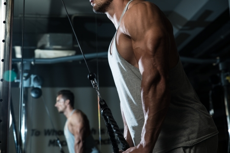 Triceps Pulldown Workout photo