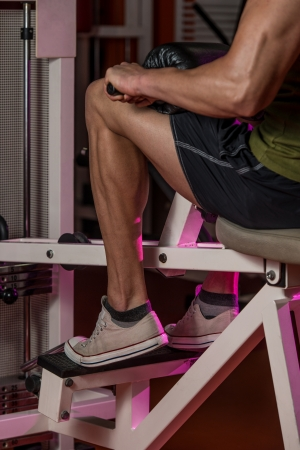 leg muscle fiber: Sporty Legs Calf
